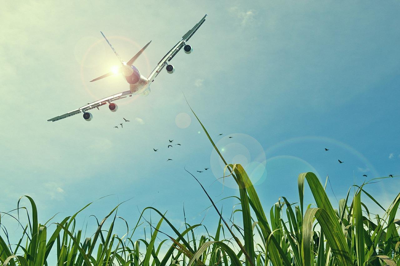 GRÜNE im Kreistag: Auf unnötige Flüge verzichten – das Klima schützen!